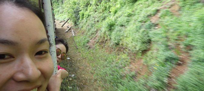 旅記事244 スリランカ鉄道で修行。ヌワラエリヤからエッラ