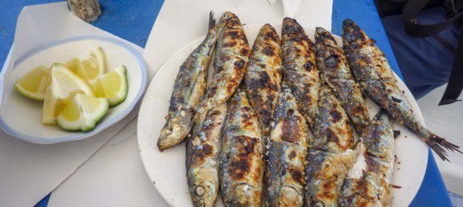 旅記事343 エッサウィラの新鮮な魚を食す