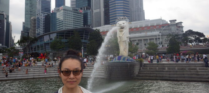 旅記事62 シンガポールを終えて