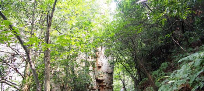 舞踏22 武陵源 天子山登山道と金鞭渓での舞踏