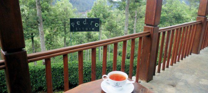 旅記事243 Pedro tea factoryとヌワラエリヤの郵便局