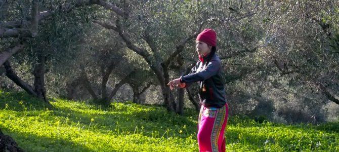 舞踏44 クレタ島ヴーヴェス村のオリーブ畑での舞踏