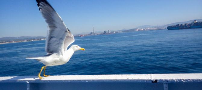 旅記事328 アルヘシラスを経てジブラルタル海峡を渡り、モロッコへ!