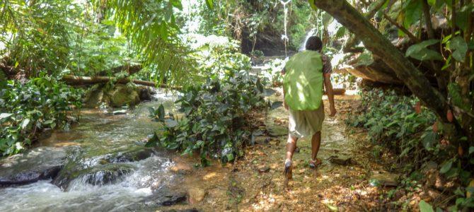 旅記事376 トーゴの泳げる滝「カスケード・ウォメ」